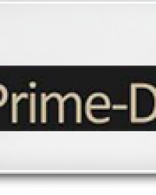 prime-date review