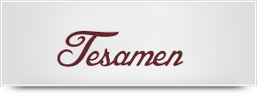tesamen.org review